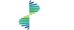 FIRST NETWORK LOGO